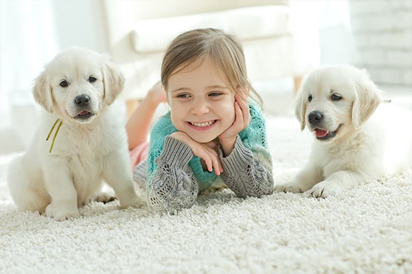 girl with 2 puppies on odorless rug