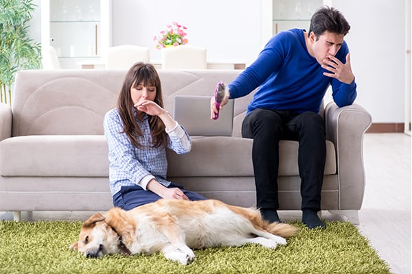 husband and wife with smelly dog